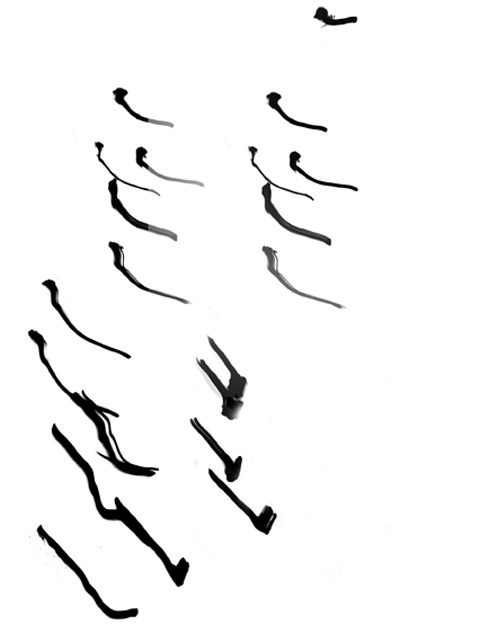 Letters to My Daughters, 2005, Black and White Abstract Photography, Shirine Gill