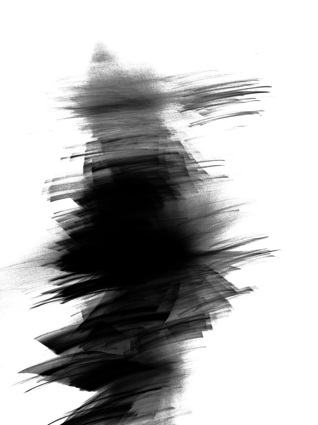 Untitled, Feathers, 2011, Black and White Abstract Photography, Shirine Gill