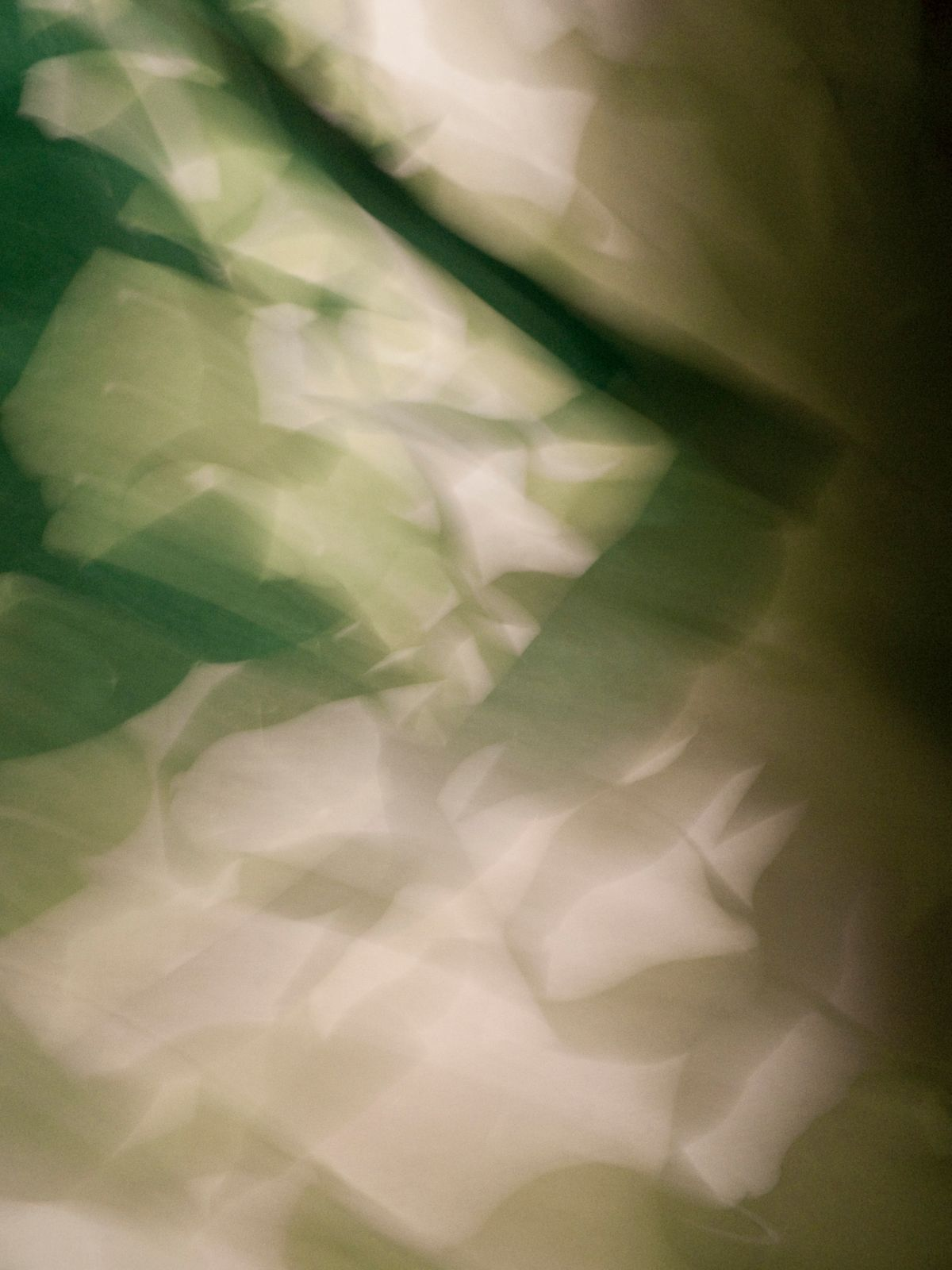 Ganja Dreams V, 2006, Abstract Color Photography, Shirine Gill