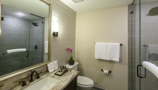 Double Queen Luxury Inn Bathroom_CROPPED_550X315.jpg