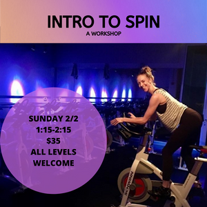 INTRO TO SPIN.png