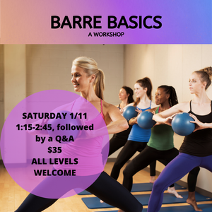 BARRE BASICS.png