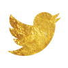 August_graphics_pack_Twitter Gold.png