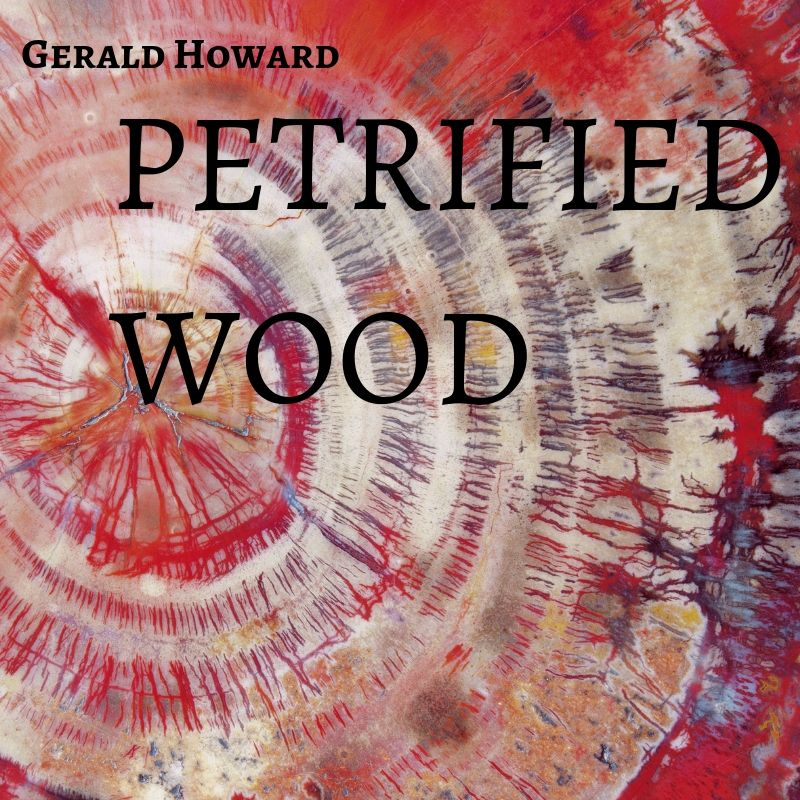 PETRIFIED WOOD.jpg