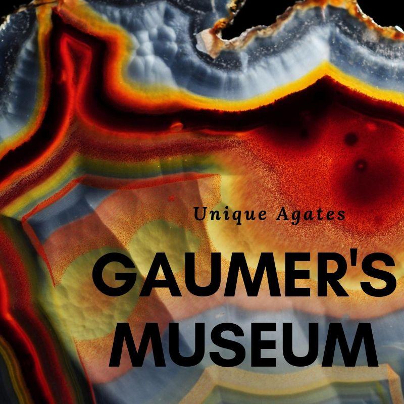 vendor Gaumer's Museum.jpg