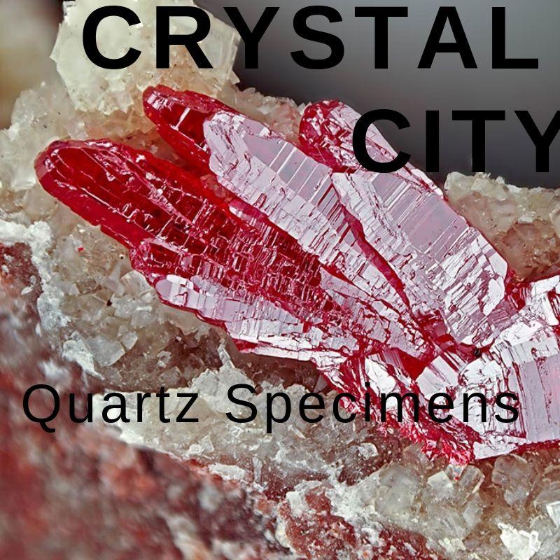 vendor crystal city.jpg