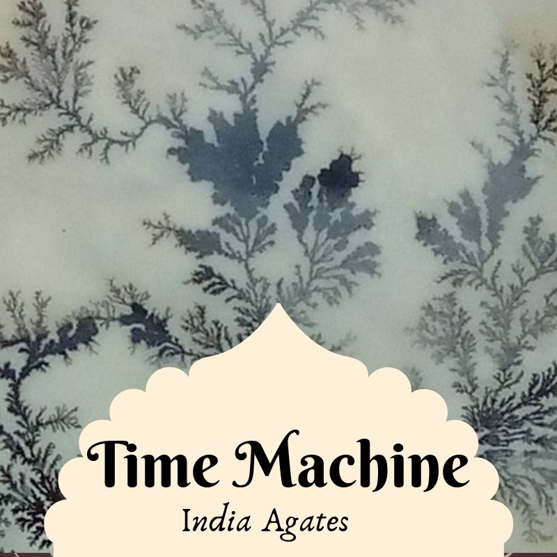 vendor time machine (1).jpg