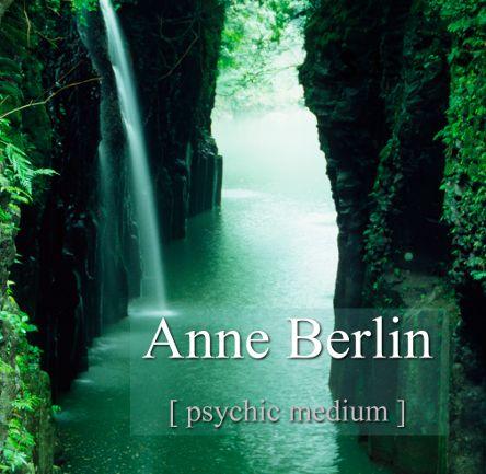 Anne Berlin Practitioner