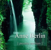 Anne Berlin Practitioner