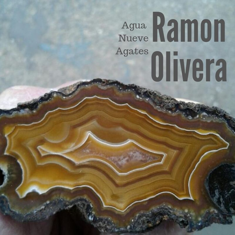 vendor Ramon Olivera .jpg