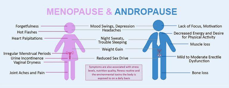 menopause vs andropause.jpg