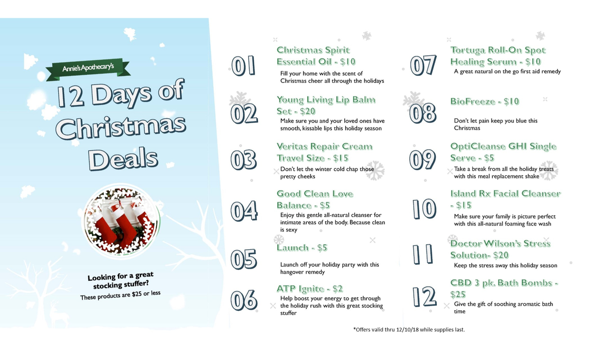 12 days of christmas website.jpg