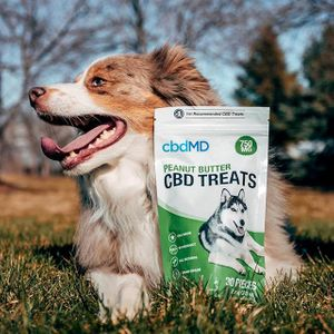 CBDMD Pet Treats 750 with dog.jpg