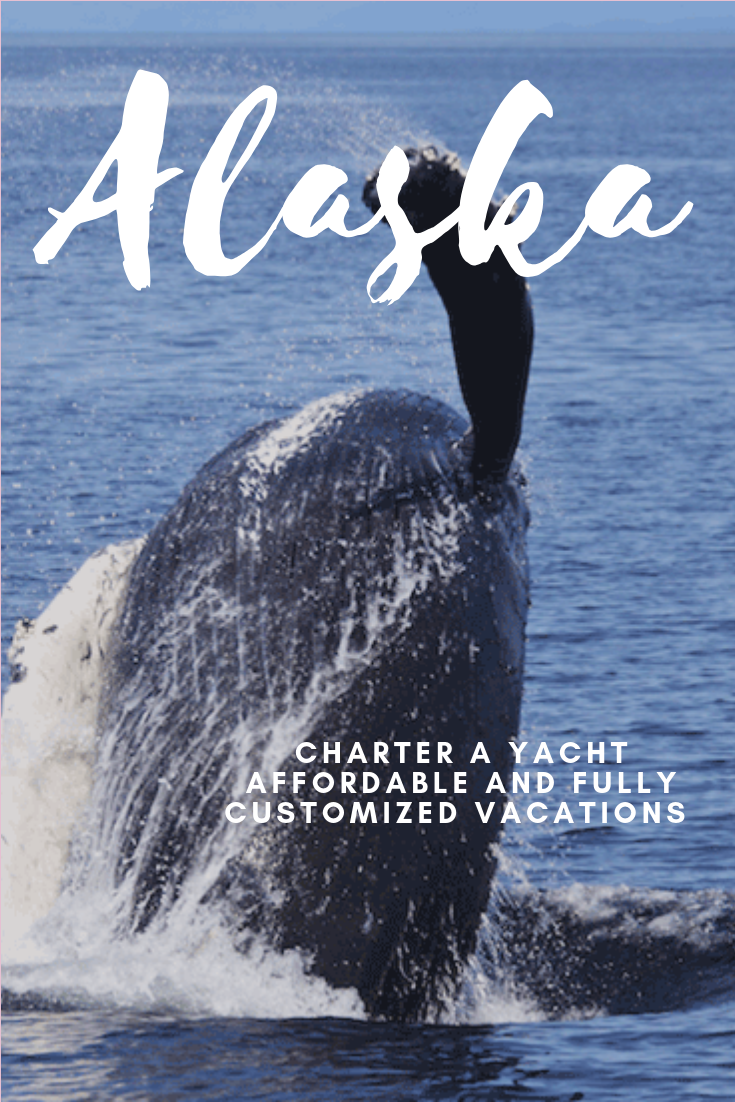 charter a yacht in alaska vs booking an alaska cruise ship #cruiseship #aslakavacay #vacation #chartering
