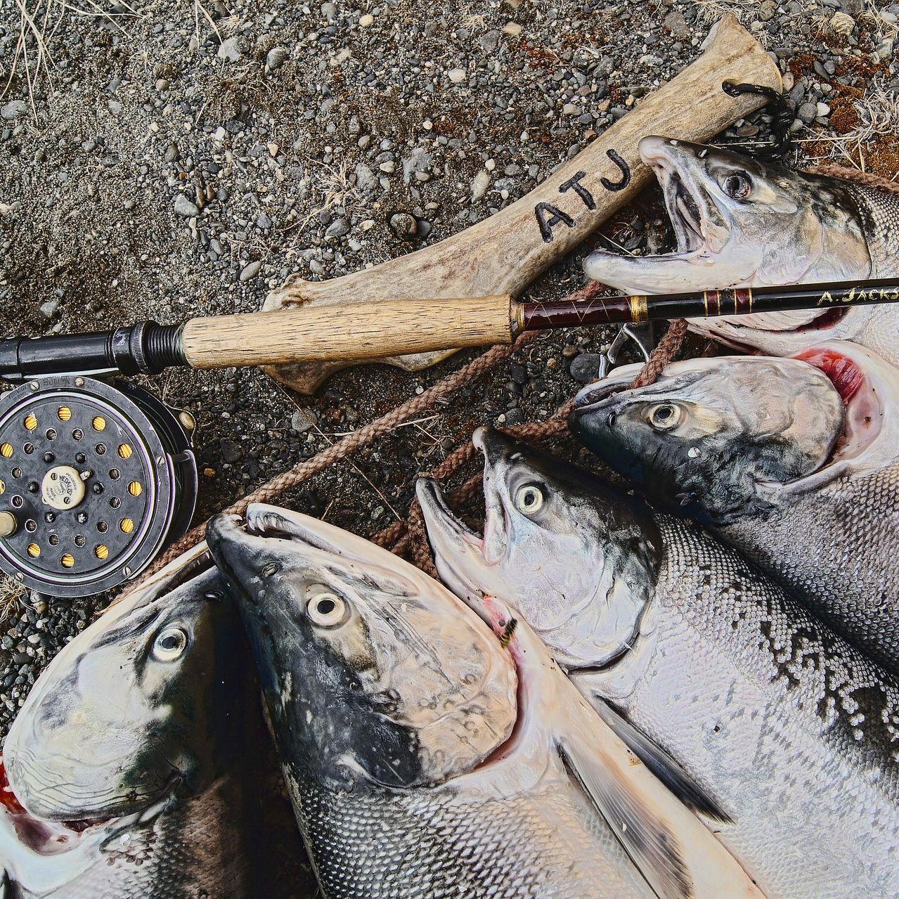 salmon-585701_1920_edited.jpg