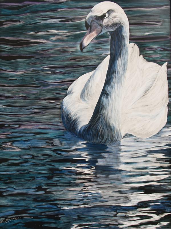 quiet swan.jpg