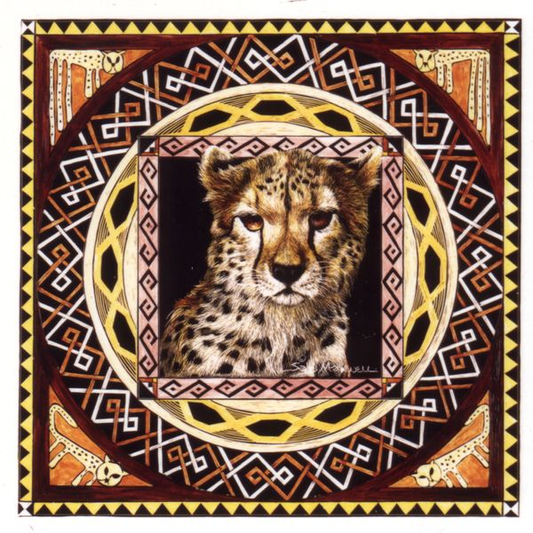 african cheetah.jpg
