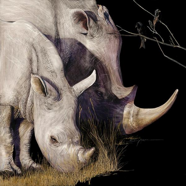 Rhino_10 inches 72 dpi rgb.jpg