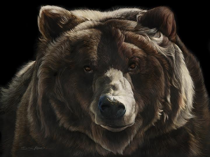 be bear aware.jpg
