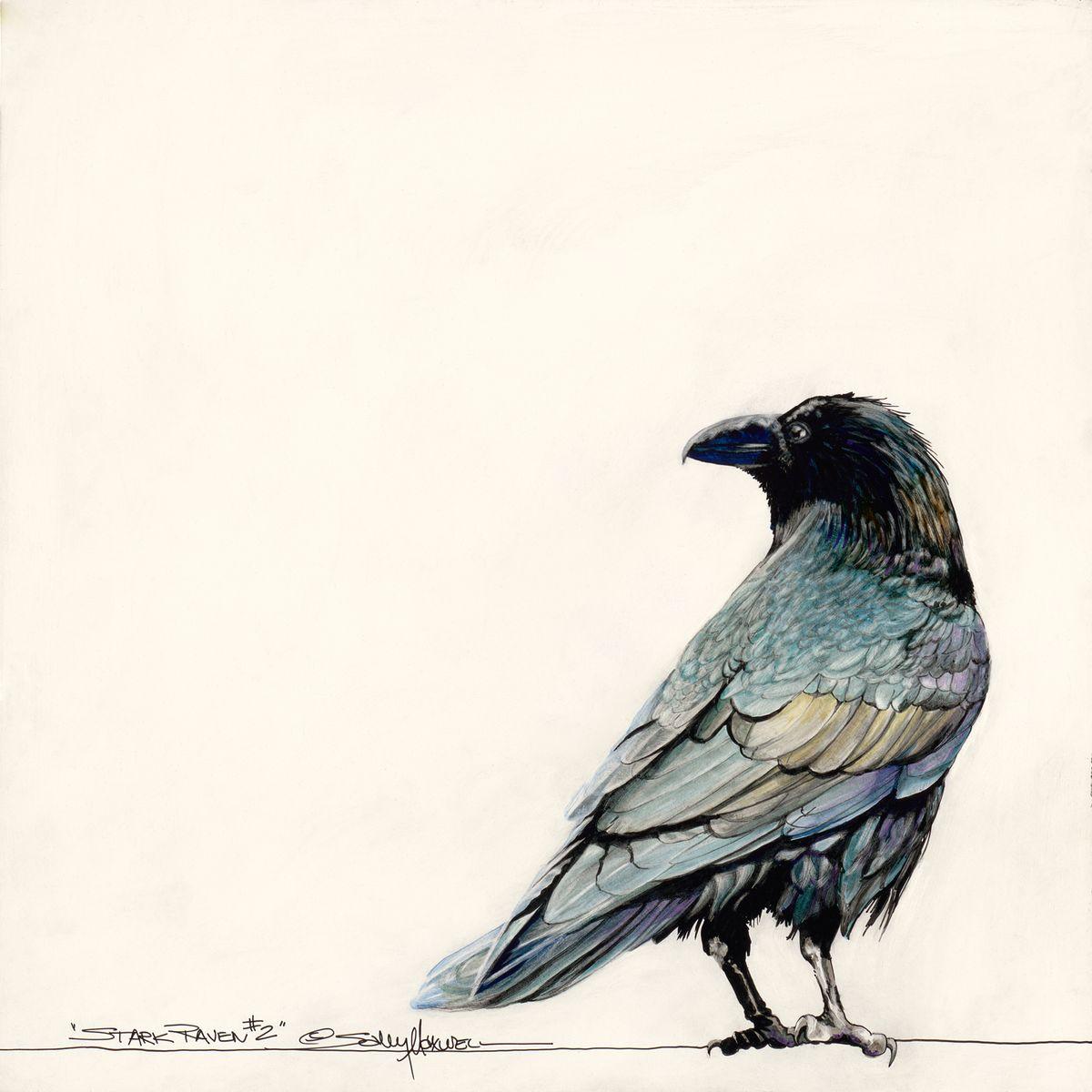 12x12 Stark Raven White.jpg