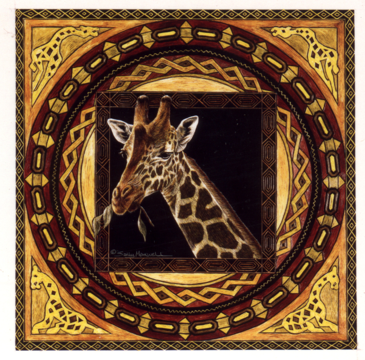 african giraffe.jpg