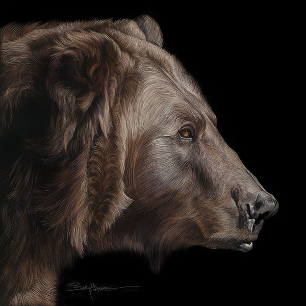 Profile-of-a-Grizzley-Bear 24x24-.jpg