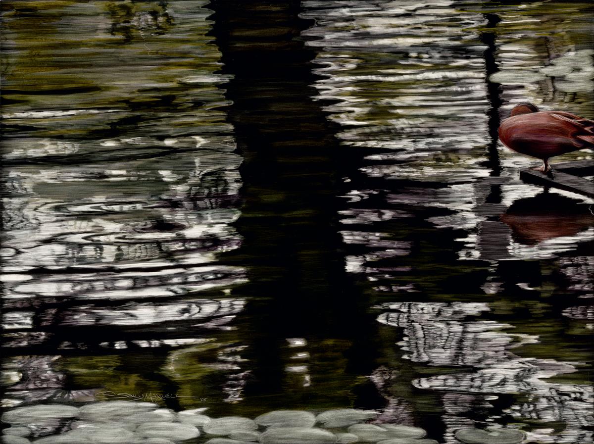 houston zoo reflection.jpg