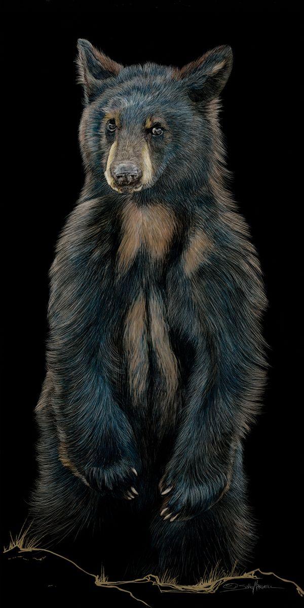 Baby Bear_18x36.jpg