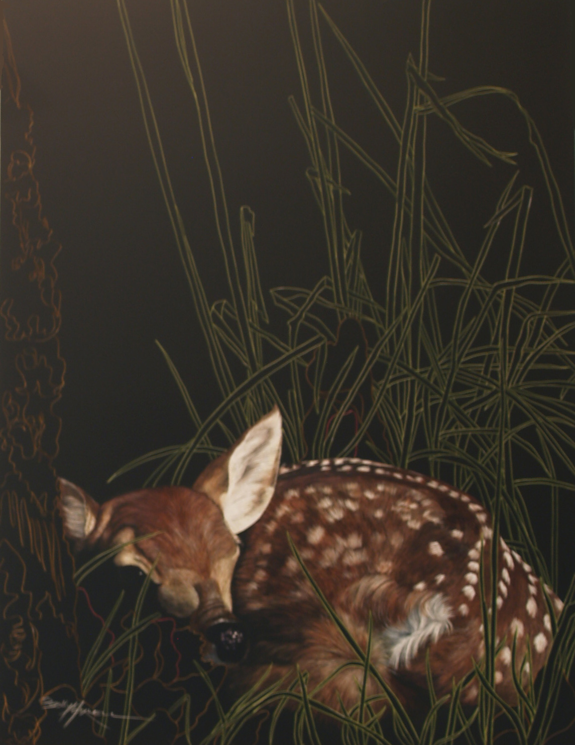 fawn cropped and fixed.jpg
