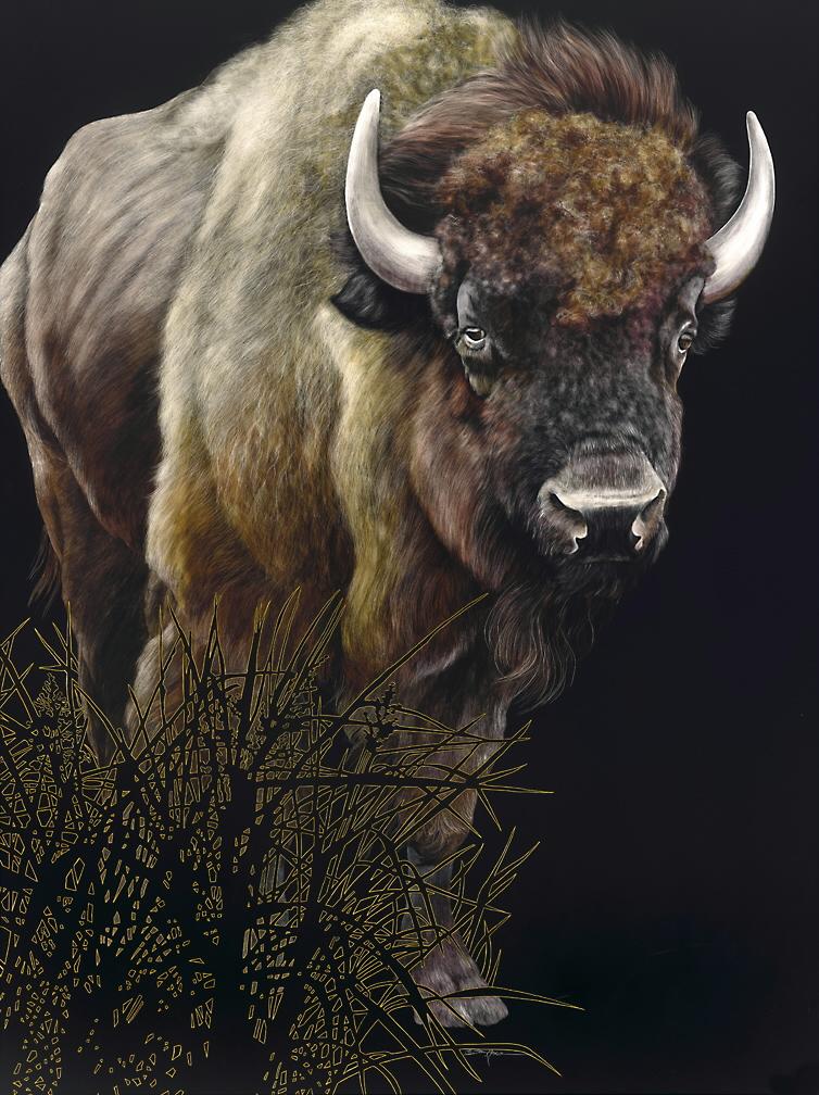 american buffalo.jpg