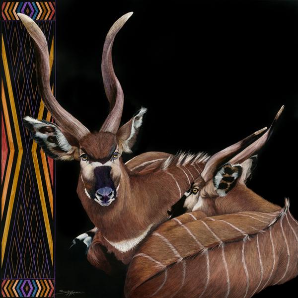 lovely bongos_36x36.jpg