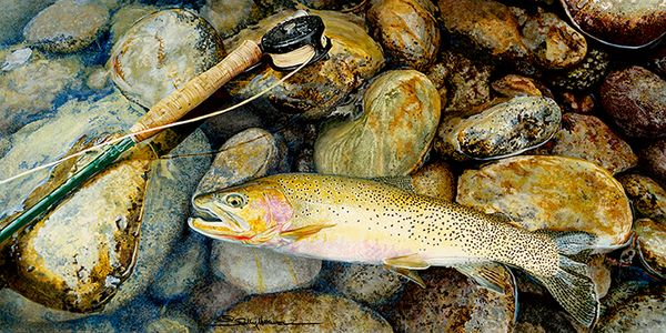 Lochsa-Westslope-Cutthroat_36x18-10-inches-72- dpi jpeg.jpg