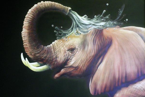 baby elephant bath.jpg