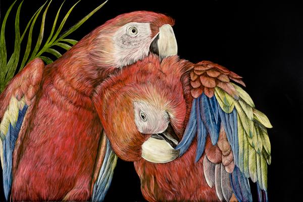 parrot heads.jpg