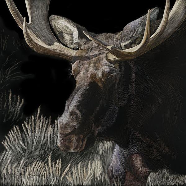 Mystery-Moose-18x18.jpg