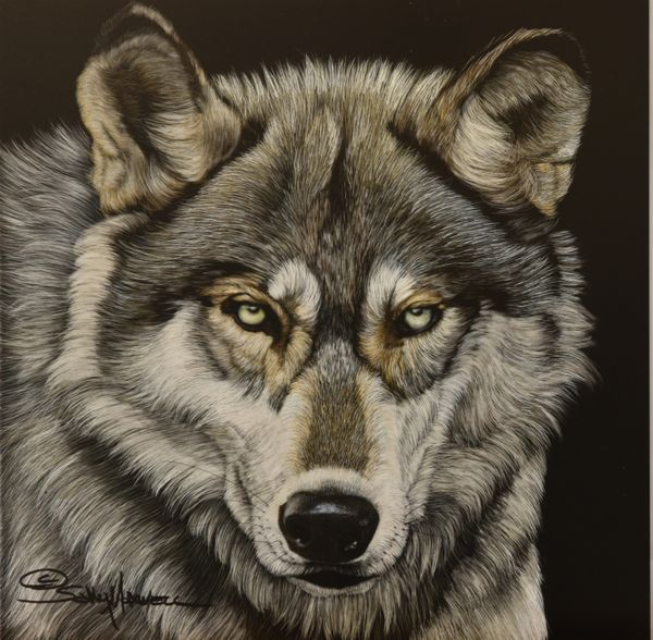 green eyed wolf.jpg