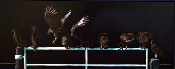 buzzards, monday morning at the betty ford.jpg