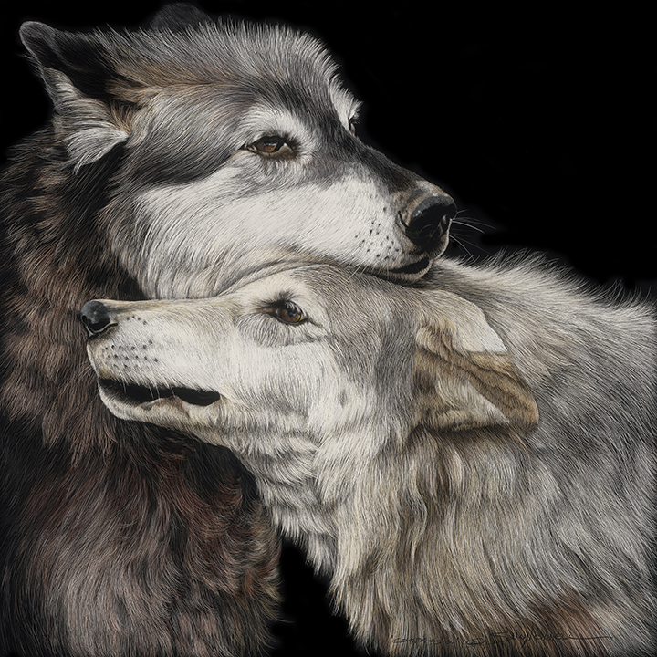 Compassion_24x24.jpg