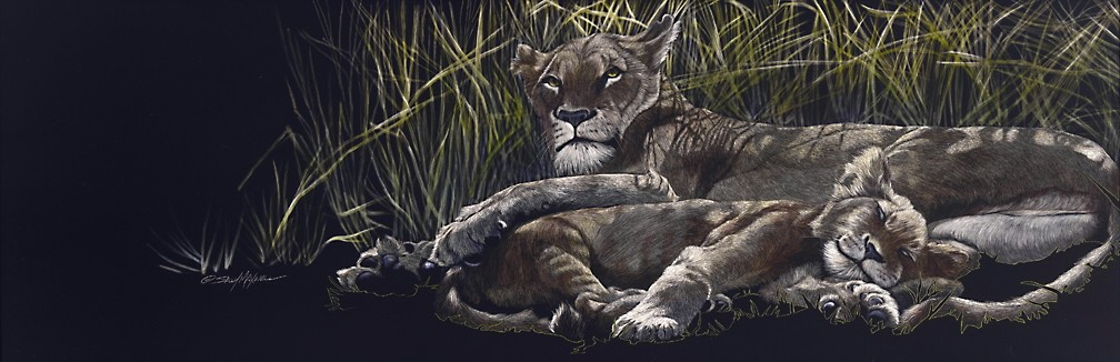 naptime in the shadows 12x36.jpg