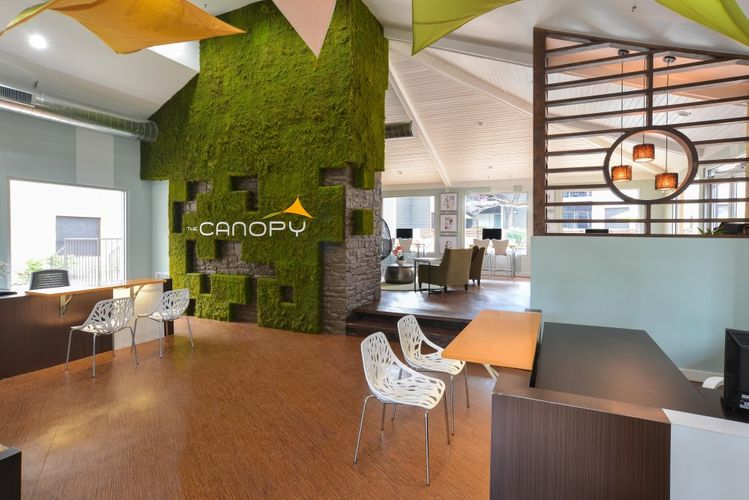 Canopy-125.jpg