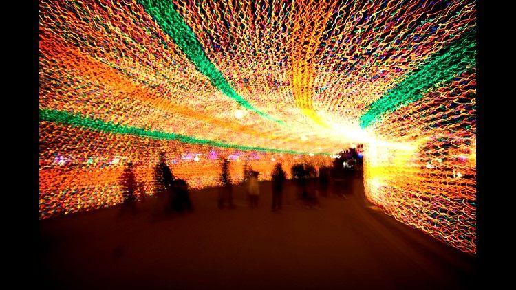 trail o lights_1512775351788_11909721_ver1.0.jpg