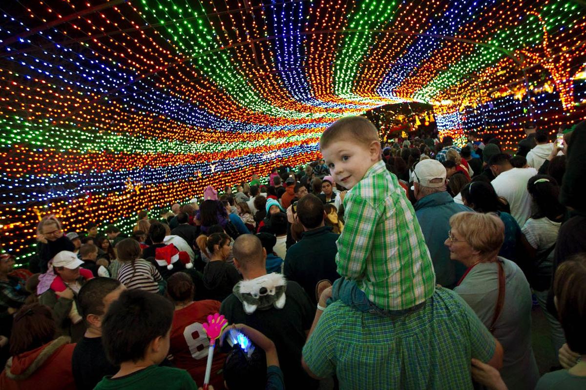 event_zilker_trail_of_lights.jpg