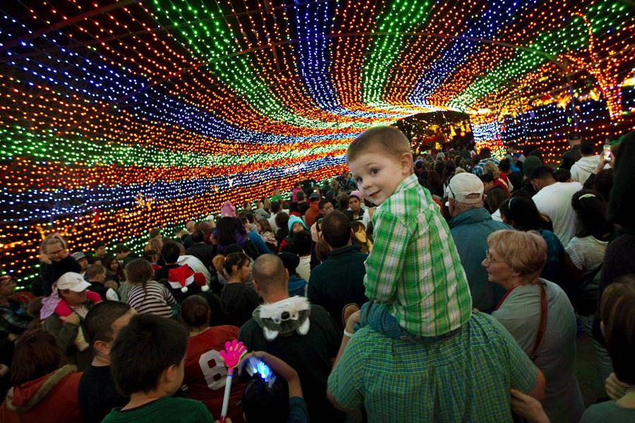 event_zilker_trail_of_lights.jpg