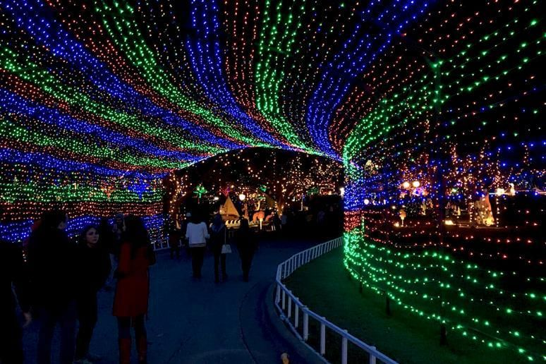 Mega Cavern Christmas Lights.The Best Christmas Light Displays In Every State Austin