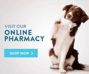 Vet Around Town Mobile Pet Care