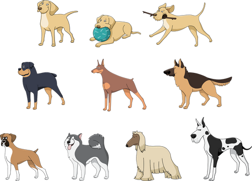 animals-1454214_1280.png