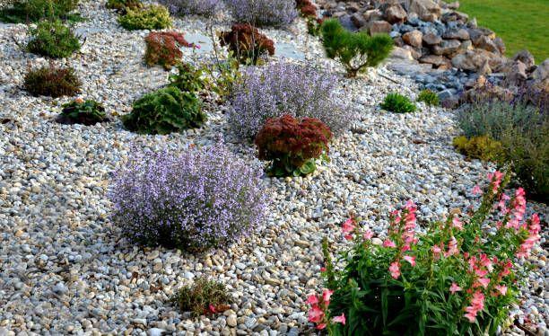 Landscape Gravel.jpg