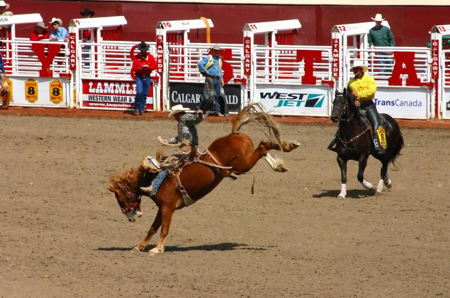 CalgaryCowboy.jpg