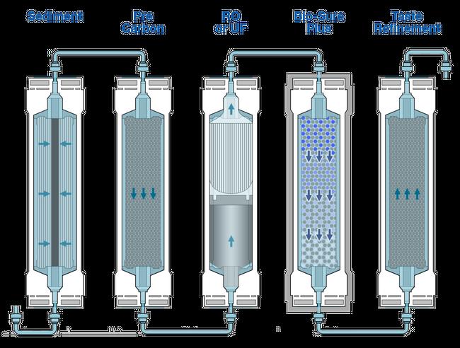 Purification Process.png