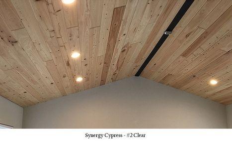 Synergy Cypress Pic #2 Clear 2021.jpg